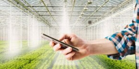 человек орошает поле через мобильное приложение