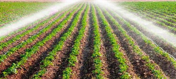 точный полив на поле