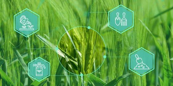 схема основных методов защиты растений