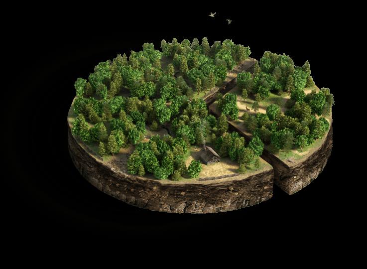 Изображение приложения для мониторинга леса